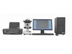 NBJX金相图像分析仪