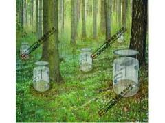 微生物呼吸/土壤呼吸测定