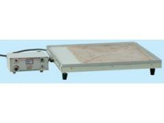 电子控温电热器(电子控温电热器)