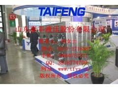 THP10液压机10000T二通插装阀集成系统