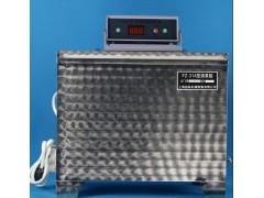 FZ-31A雷氏沸煮箱有效容积